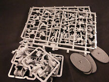 Lizardmen Age of Sigma Seraphon Saurus Cold One Knights on Plastic Frame