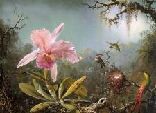 Huge art Oil painting Cattelya Orchid and Three Brazilian Hummingbirds flowers