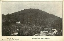 DELHI NY ROUND TOP MOUNT CRAWFORD IN CATSKILLS POSTCARD c1910