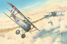 """First American Ace"" Roy Grinnell Aviation Print - Signed by 26 American Aces"