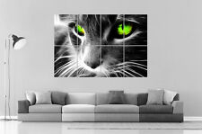 CHAT OEIL JADE CAT EYES JADE Wall Art Poster Grand format A0 Large Print