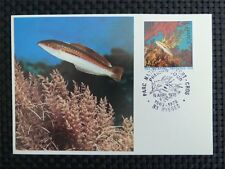 FRANCE MK 1978 TROPICAL FISH CORAL PISCES FISCHE CARTE MAXIMUM CARD MC CM c3223