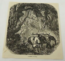 1884 magazine engraving ~ A SCENE IN INDIA - Elephants, horses, jungle