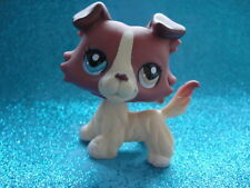 ORIGINAL Littlest Pet Shop Collie DOG #1262 Shipping with Polish