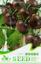 1 Pack 20 Tomato Seeds Lycopersicon Esculentum Black Pearl Tomato Vegetable C095