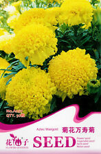 50 Original Package Seeds Aztec Marigold Seeds African Tagetes Erecta A097