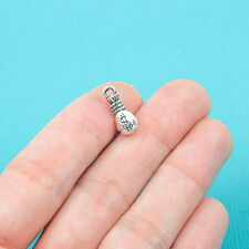 10 pcs BAG of MONEY Tibet silver Charms Pendants DIY Jewellery Making