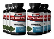 Klamath Blue Green Algae - Organic Blue Green Algae 500mg - Vital Enzymes  6B