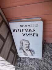 Heilendes Wasser, ein Roman von Hugo Scholz, aus dem Manz Verlag