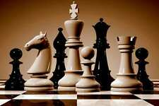 HUGE Chess Book collection (PDF,ebook,CB)