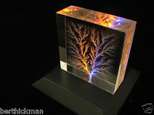 """Captured Lightning"" Lichtenberg Figure Beam Tree sculpture - Tesla inspired!"