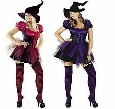 Witch Witches Costume Halloween Fancy Dress Ladies Available in Purple or Red