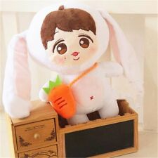 "KPOP Stars 9"" Plush Toy EXO-M Issing Rabbit LAY Doll Fans Gifts Collection New"