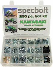 250pc Bolt Kit Kawasaki Tecate KXF250 KXT250 body plastic frame fender engine