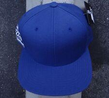 Grizzly Griptape Blue Side Logo Mens Skate Co. Snapback Hat HTDMD-391