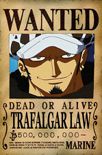 One Piece WANTED Poster (26 x 40 cm) - TRAFALGAR LAW – Last Bounty!
