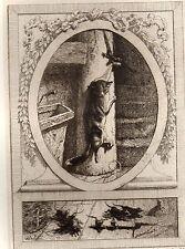 EAU FORTE / Fables de la Fontaine 1883 / LE CHAT ET UN VIEUX RAT
