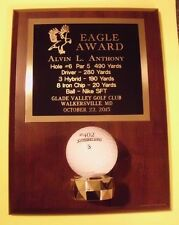 EAGLE GOLF TROPHY AWARD PLAQUE HOLDS GOLF BALL FREE ENGRAVING free ship