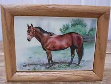 Horse Pony Graphic Art Ceramic Laminate Tile Framed Decoration Decor
