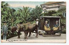 PORTUGAL MADEIRE Madeira Attelage Carro de bois