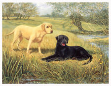 LABRADOR RETRIEVER YELLOW & BLACK DOG FINE ART LIMITED EDITION PRINT