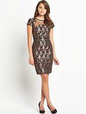LITTLE MISTRESS Gold Lace Christmas Party Dress    UK 14