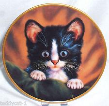 Schirnding katzenporträts 4. Bradex sammelteller = la los curiosos