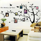 Removable Home Decor Photo Frame Tree Bird Decal Family Wall Sticker Mural Art