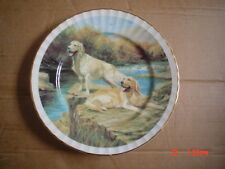 Sheltonian China Collection Collectors Plate DOGS IN THE FIELD - GOLDEN LABRADOR