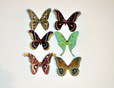 Butterfly Moth Magnets Set of 6 Multi Color Insects Reflections In Wildlife