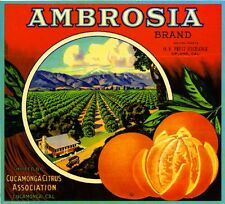 Cucamonga San Bernardino County Ambrosia Orange Citrus Fruit Crate Label Print