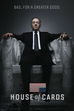 House of Cards Netflix Kevin Spacey TV Brand New Licensed single 24x36 poster!!!