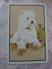 GORGEOUS WHITE TERRIER DOG WESTIE ONE SINGLE Genuine Original SWAP PLAYING CARD
