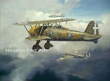 Fiat CR.42 Italian Plane Limited Edition Aviation Painting Art Print Darryl Legg