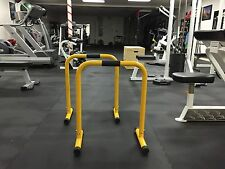 Shaka Equalizer Dip Bar stand (Fitness Exercise Equipment)