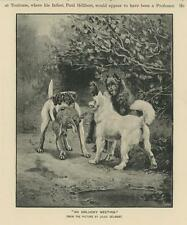 ANTIQUE HUNTING HUNT DOGS WOODS TERRIER HOUND HARE RABBIT SMALL OLD ART PRINT