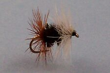 6  Renegade, dry  fishing flies, mouche pêche