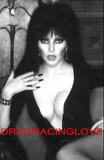 "Cassandra Peterson ""Elvira"" ""Mistress of the Dark"" HOT ""Pin-Up"" PHOTO! #3b BW"