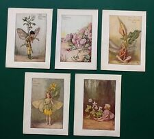5 VINTAGE 1930s FLOWER FAIRIES OF SUMMER/ SPRING UNMOUNTED BOOKPLATES