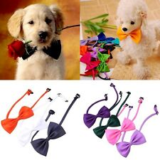 10Pcs/Set New Lovely Cute Bow Tie For Dog Cat Pet Necktie Neck Collar Adjustable