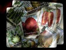 Pottery Barn Seed Packs Large Placemats Set Of Three New Colorful Summer