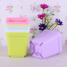 Mini plastic plants nursery square flower pots with a tray Home Garden Decor