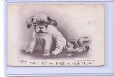 VINTAGE SIGNED V COLBY DOG CAN I PUT MY SHOES IN YOUR TRUNK? POSTCARD