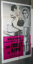 THE FRUIT IS RIPE 1961 BAD GIRL one sheet SCILLA GABEL original movie poster