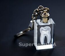One Dental Keychain With 3 D Crystal  Molor For DentalTeam Gifts