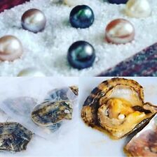 LET'S MAKE A DEAL! 20 INDIVIDUALLY WRAPPED AKOYA OYSTERS WITH PEARLS 6-7mm