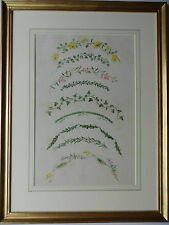 JOHANN KNAPP 1778-1833 ORIGINAL PAINTINGS OF WILD TRAILING FLOWERS EX CHRISTIES