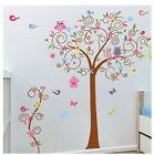 Large Owl Scroll Bird Flower Tree Wall decals Removable kids nursery sticker Art