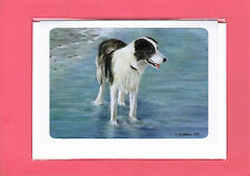 Border Collie Greeting Card / Notelet (Blank inside) #610108