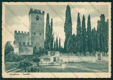 Treviso Conegliano Castello FG cartolina VK2718
